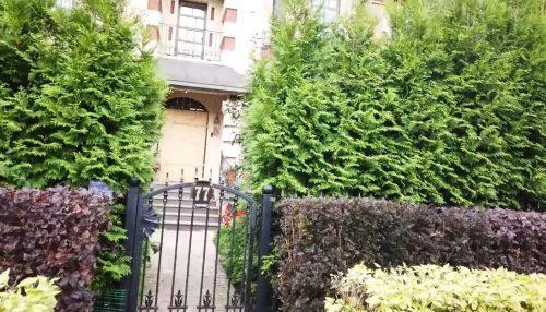 «После одних особей тут все расти перестало»: Муцениеце вернулась в дом, где жила с Прилучным