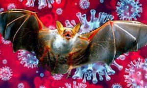 У коронавируса появились опасные