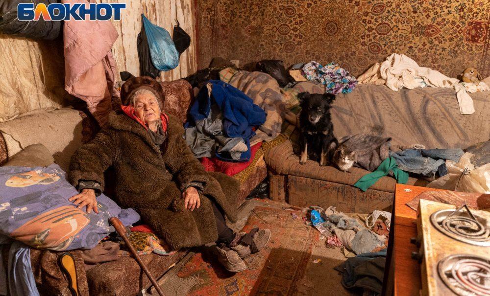 Заживо замерзающая пенсионерка греется дохлыми кошками: история 81-летней волгоградки
