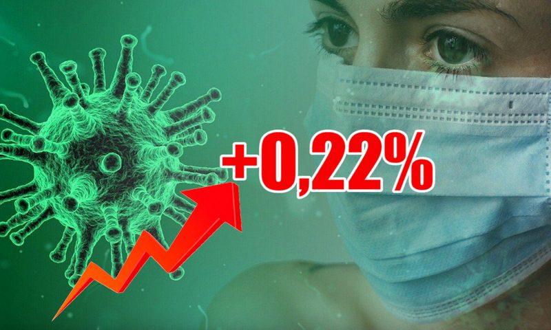 Динамика коронавируса на 1 декабря