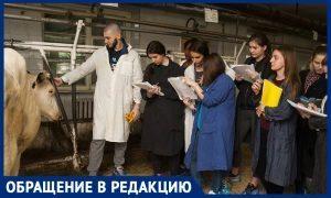Тимирязевская академия хочет порубить на мясо 30 учебных коров