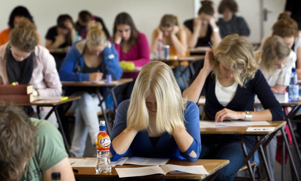 «К кавказцам станут относиться лучше, если они изменят свое поведение»: расистское тестирование провели для ставропольских школьников