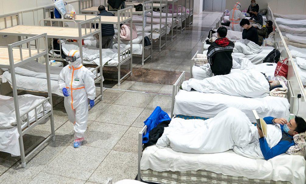 Мутирующий птичий грипп может привести к новой пандемии
