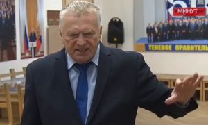 Жириновский высчитал срок заключения Навального - 40 лет