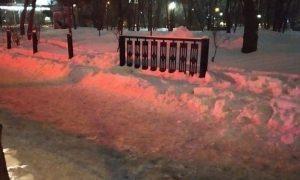 Два жителя Новосибирска украли забор Центрального парка