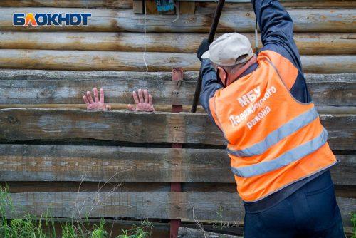 Известный художник выступил в защиту детей ДЦП и против сноса «Соснового бора» в Волгограде