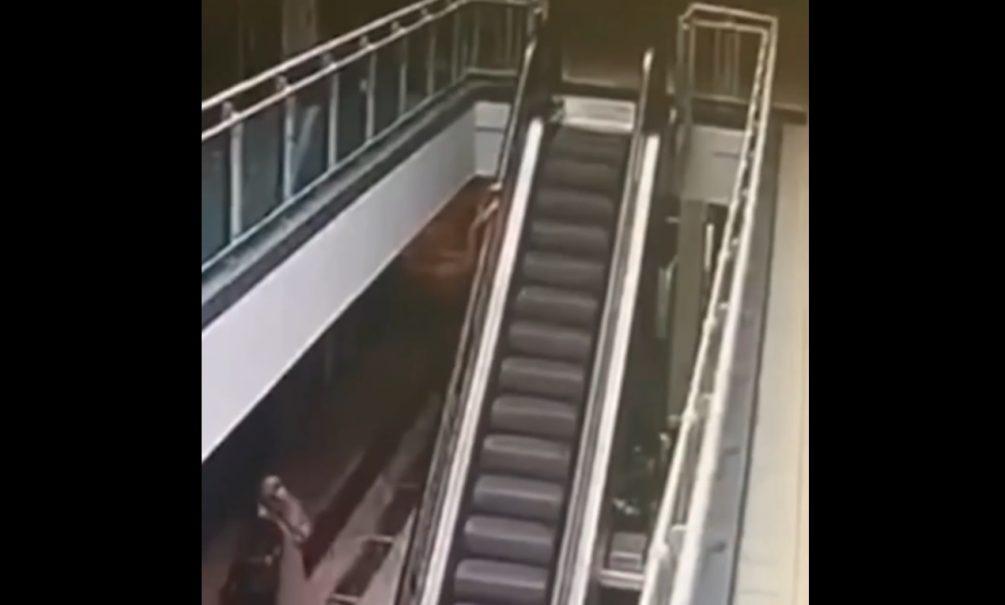 Камеры московского ТЦ сняли, как 4-летний мальчик сорвался с эскалатора