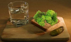 По следам оленей: русские ученые изобрели «беспохмельную» водку