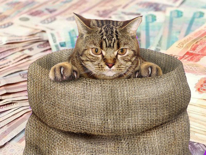 Круиз «не скажем куда» за полмиллиона рублей придумала американская туркомпания