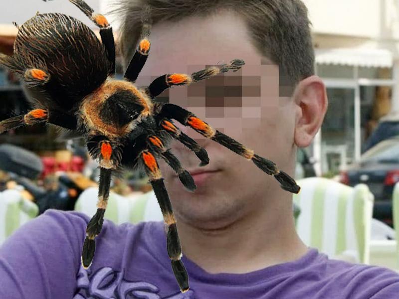 Утратил бдительность: половой орган москвича укусил паук-птицеед
