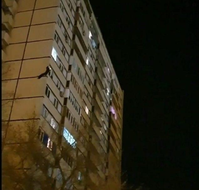 Аттракцион: прыгни с 16-ти этажного дома