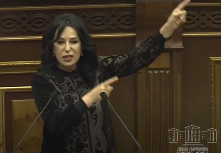Представитель Армении в ПАСЕ обвинила коллег в антироссийской истерии из-за дела Навального