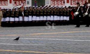 Голубь-военачальник, загоревшийся автомобиль и другие курьезы и ЧП парада Победы