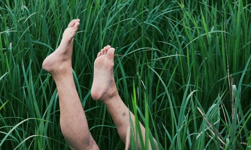 Мужчина в Перми признался в убийстве жены. Ее ноги отдельно от тела нашел случайный прохожий