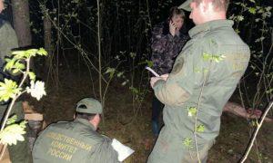 В Нижегородской области нашли тело убитой и изнасилованной 12-летней девочки