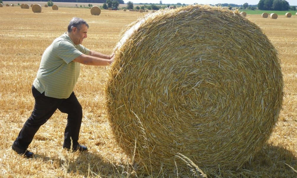 Роспотребнадзор «отпустил» россиян пораньше с работы из-за жары