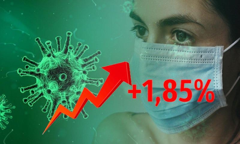 Динамика коронавируса на 13 июня