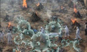 Незваный «гость» из Индии: все о самом агрессивном штамме коронавируса