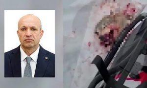 Депутат-единоросс, садистски расправившийся с волком, сдал свой мандат