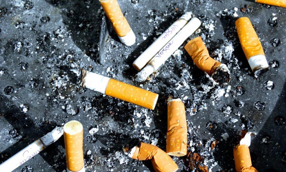 Мухи угрожают российским курильщикам