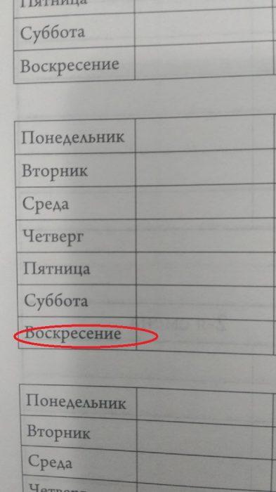 За три грубые ошибки создателей школьного дневника оштрафуют на 5000 рублей