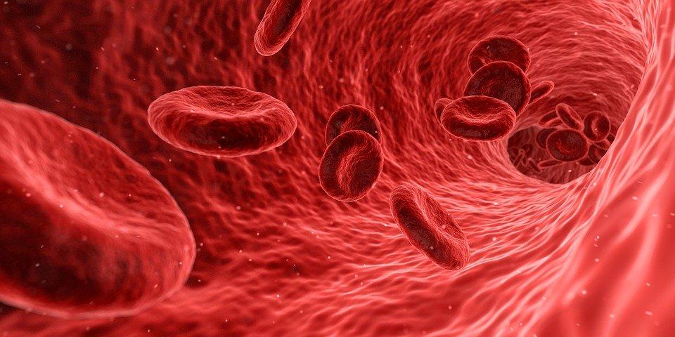 Ученые выяснили, что COVID-19 зря считали респираторным заболеванием