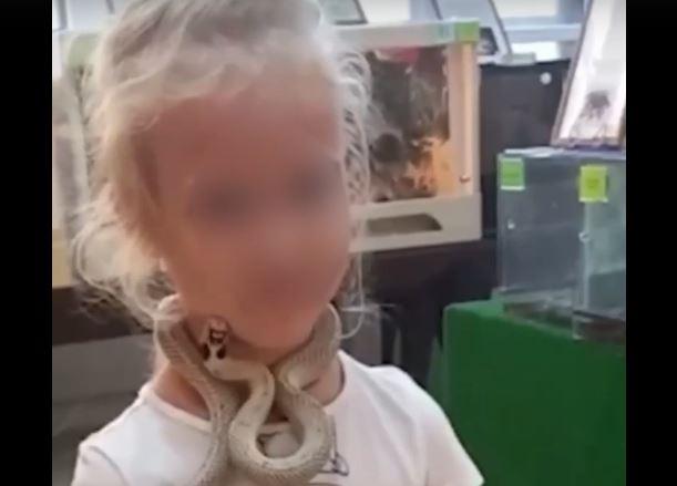 В Екатеринбурге змея из контактного зоопарка укусила пятилетнюю девочку за лицо