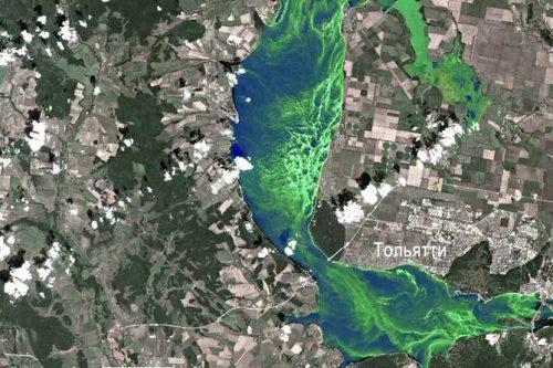 Фотографии Волги со спутника в районе Тольятти (Самарская область) предоставил Росгидромет