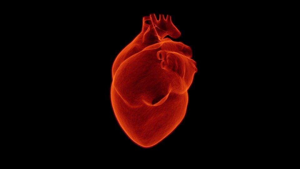 Британские ученые нашли способ точно вычислить риск  сердечного приступа или инсульта