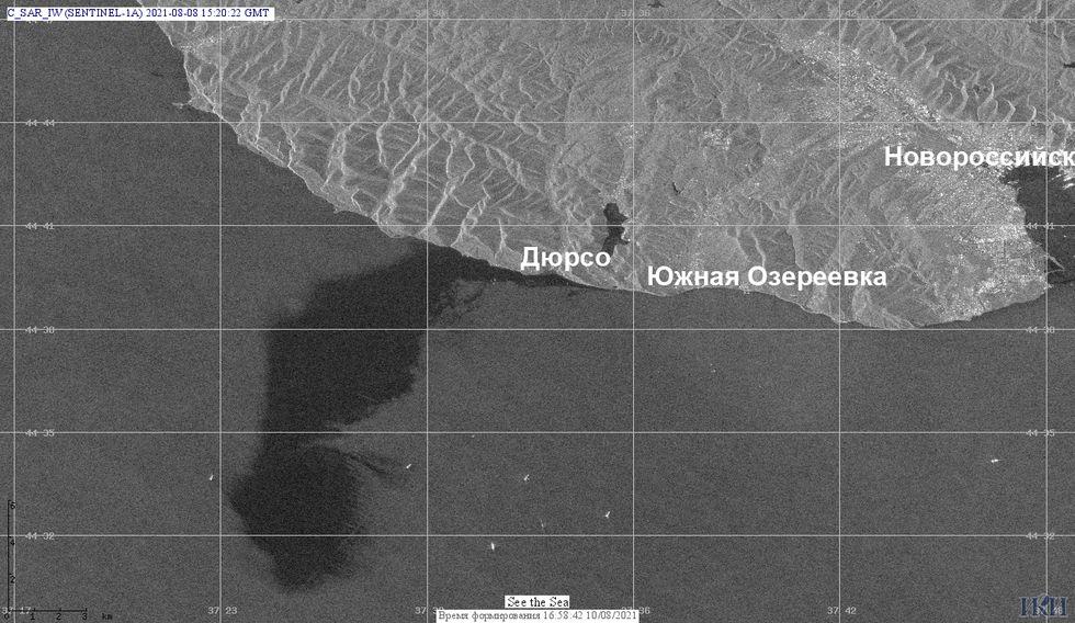 Эколог объяснил, почему данные по разливу нефти в Черном море были занижены в сотни тысяч раз