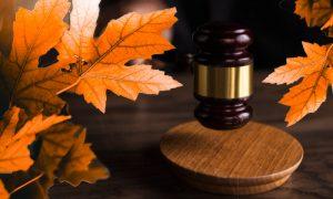 Новые законы с 1 октября: что ожидает россиян рассказал Володин