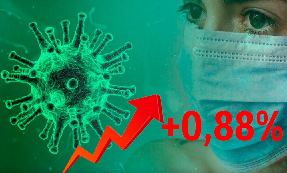 Динамика коронавируса на 13 сентября