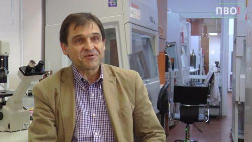 Врачи назвали истинную причину, почему смертность из-за коронавируса в России не падает