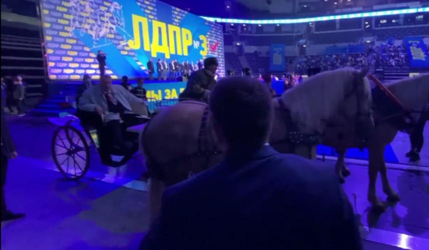 Цирк с конями и Жириновским: лидер ЛДПР явился на съезд партии на тройке с бубенцами. И лошадь тут же наложила кучу