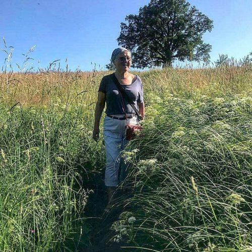 Травница Верчёнова говорит, что, если вы не успели запастить травами, то лучше всего их покупать в аптеке.