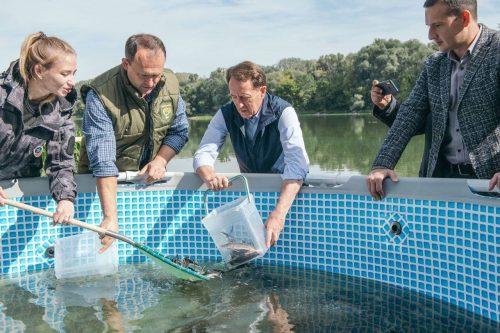 Экологическое оздоровление рек: в Дон выпустили 35 тысяч мальков стерляди