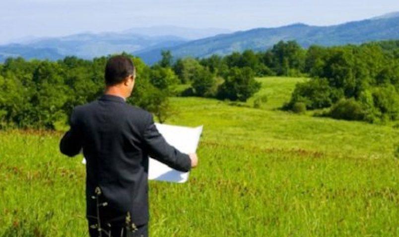 Минсельхоз готов отдать миллион гектаров российской земли  Узбекистану