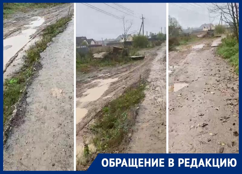 Жители поселка под Москвой просили отремонтировать дорогу. Но на ее месте разбили сквер