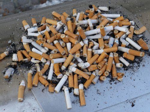 «Снова распилят бюджет»: эксперт раскритиковал идею тестировать школьников на курение