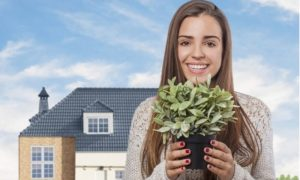 Как сделать воздух в квартире лечебным с помощью растений